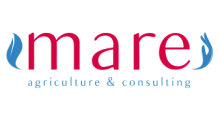 mare-logo-yeni